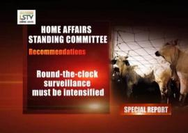 Special Report: The Cattle Mafia-Threat To National Security